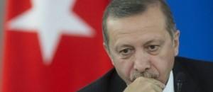 taib-ardogan