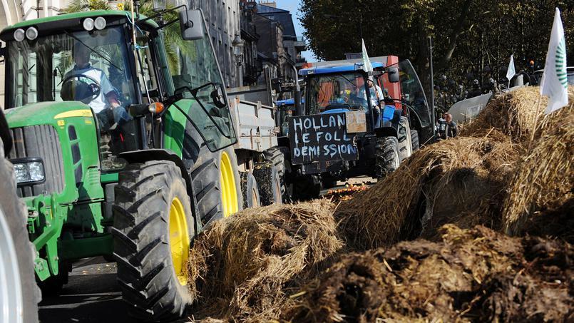 France : les exploitants agricoles maintiennent la pression