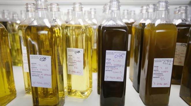 Italie : ouverture d'un procès autour de l'huile d'olive « extra-vierge »
