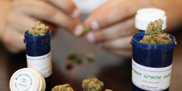 L'Allemagne légalise l'usage du cannabis à des fins thérapeutiques