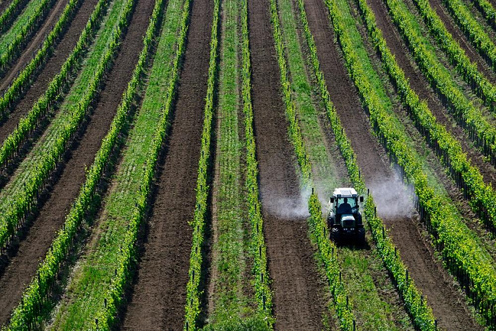 Première baisse en France de l'utilisation de pesticides depuis 2008