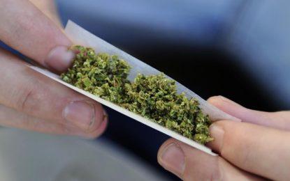 La consommation de cannabis en France ne conduira plus au tribunal