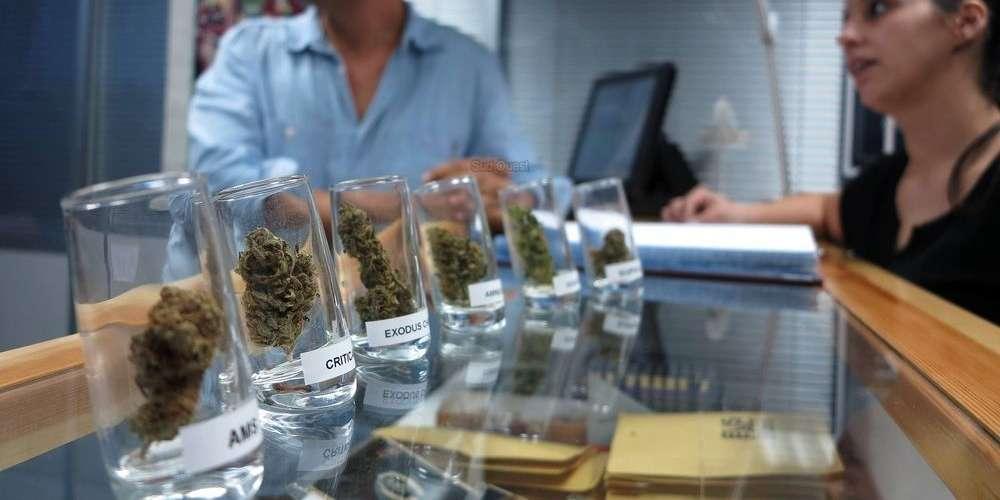 Espagne : La Catalogne autorise sous conditions la consommation de cannabis