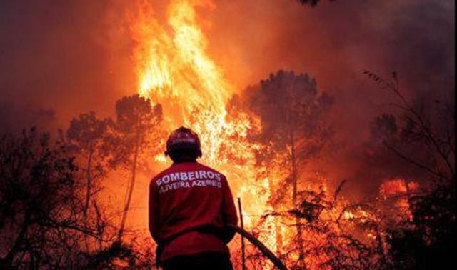 Intensification des feux de forêts au Portugal