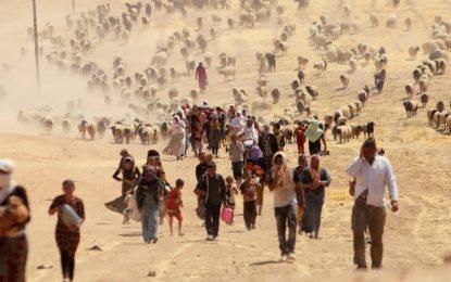 Deux fosses communes découvertes dans une région yézidie au nord de l'Irak