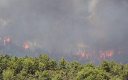 La péninsule ibérique en feu à cause de la canicule