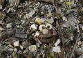 La France adoptera un système de bonus-malus pour encourager l'usage du plastique recyclé