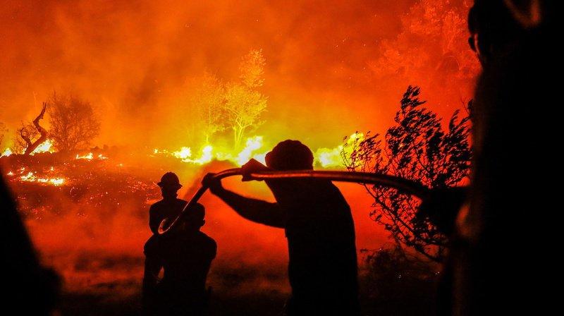 Les incendies de forêts ravagent encore le centre du Portugal