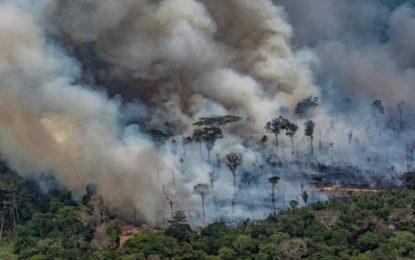 Brasilia rejette l'aide du G7 pour lutter contre les incendies dans la forêt amazonienne