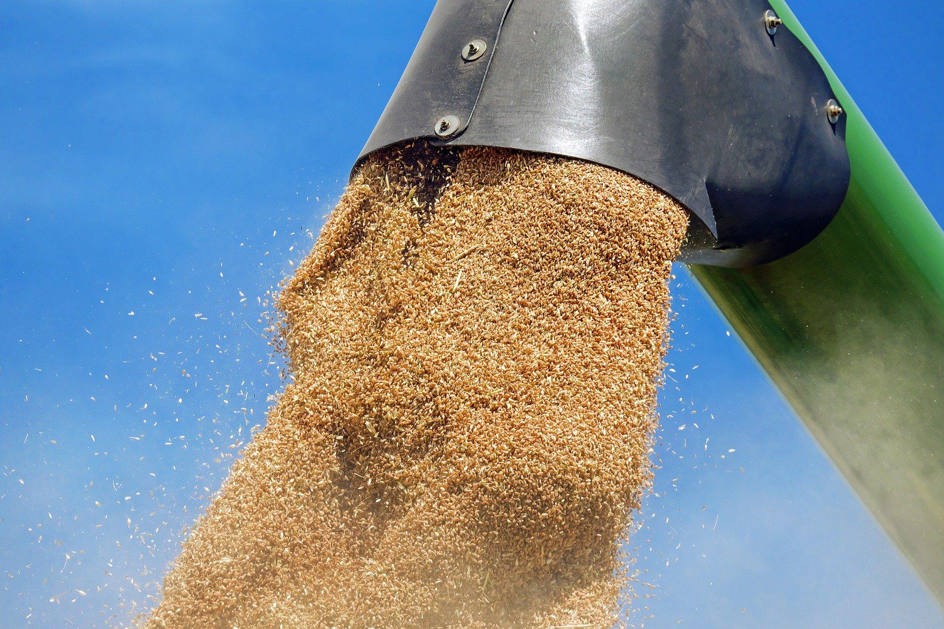 La Russie suspend ses exportations de céréales