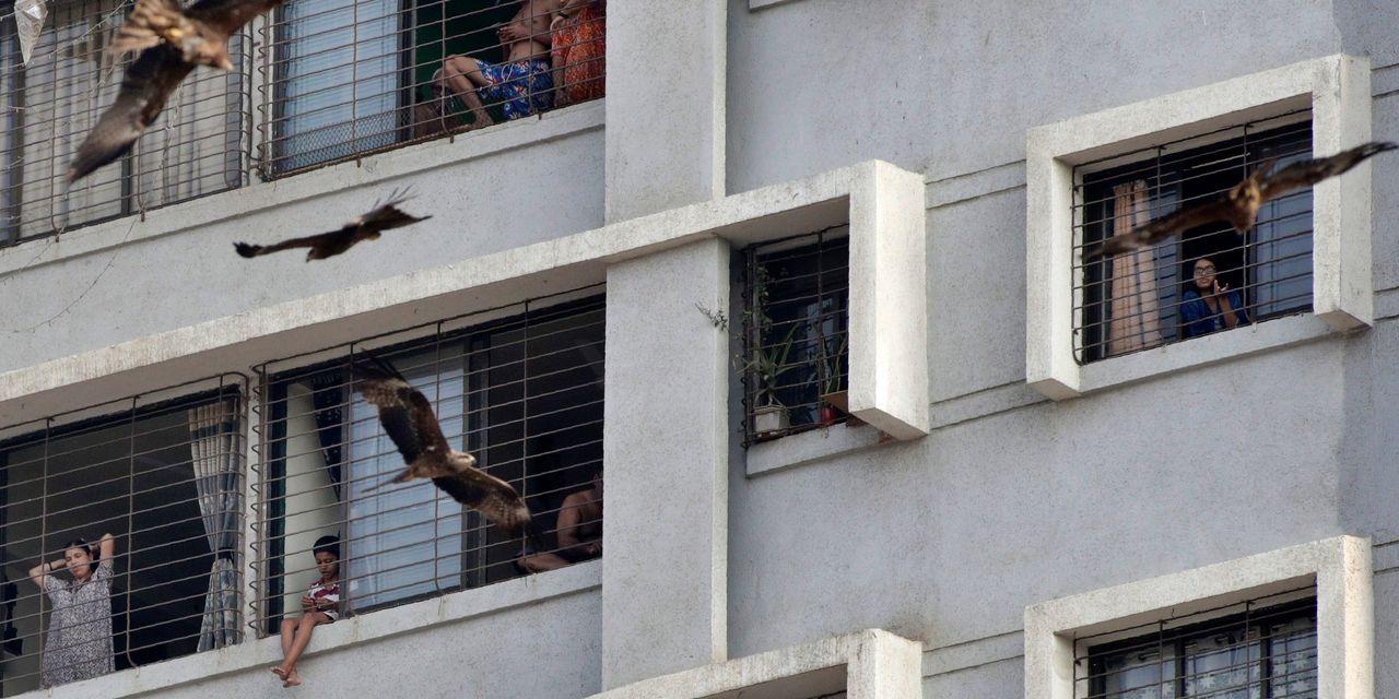 Inde-Coronavirus : Sanctions inédites de la police contre des touristes ayant violé le confinement