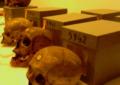 Paris restitue à Alger les dépouilles de 24 résistants tués à l'époque coloniale