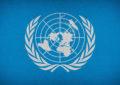 France : La loi «Sécurité globale» incompatible avec le droit international selon des experts de l'ONU