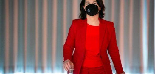 Allemagne : la candidate des Verts victime d'une campagne de fake news