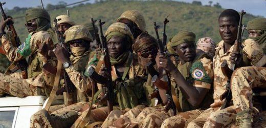 N'Djamena accuse l'armée centrafricaine d'avoir assassiné six soldats tchadiens