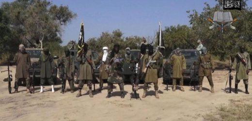 Boko Haram confirme la mort de son leader historique Abubakar Shekau